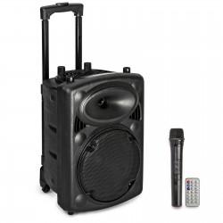 Skaļrunis ar mikrofonu / 800 Watt / MIKRO MP3 USB