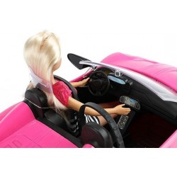 Lelle LAUREN ar automašīnu